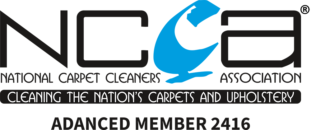Top rated carpet cleaners